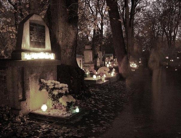кладбищенские обитатели
