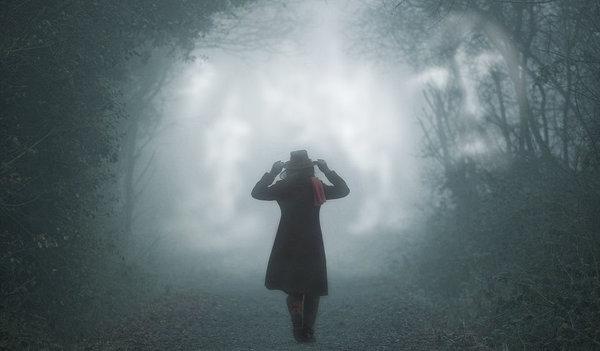 В туманное будущее